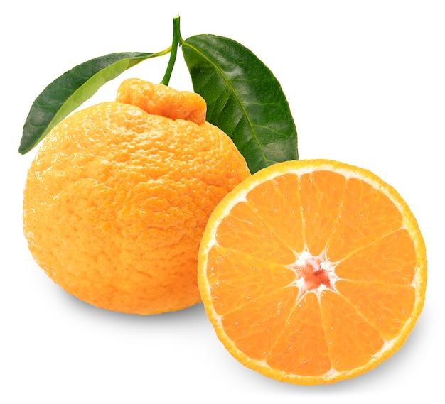 Dekopon orange oder sumo mandarine mandarine mit blättern isoliert