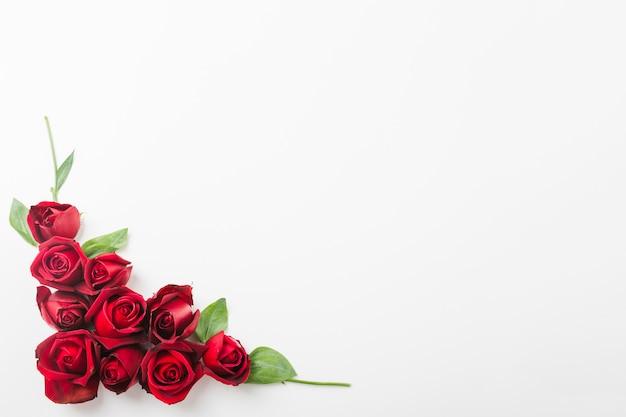 Dekoration der roten rosen auf der ecke des weißen hintergrundes