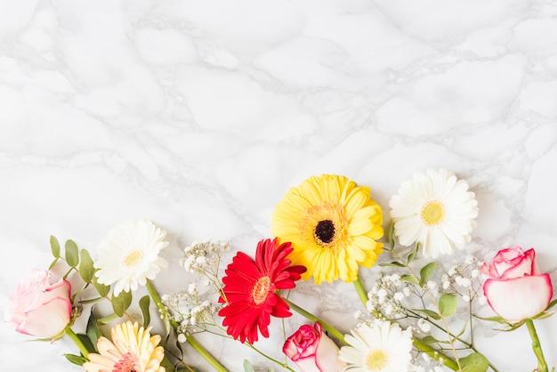 Dekorative bunte gänseblümchenblumen auf einem hintergrund
