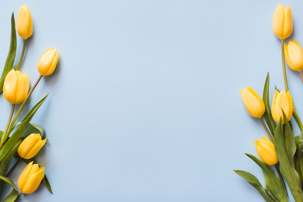 Dekorative bunte tulpenblumen auf einem hintergrund