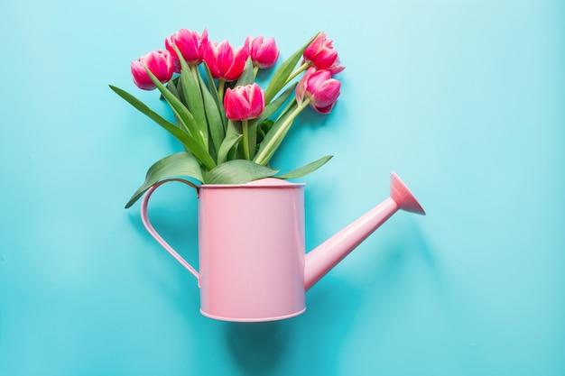Dekorative gießkanne mit rosa tulpen auf blau. gartenarbeitkonzept.