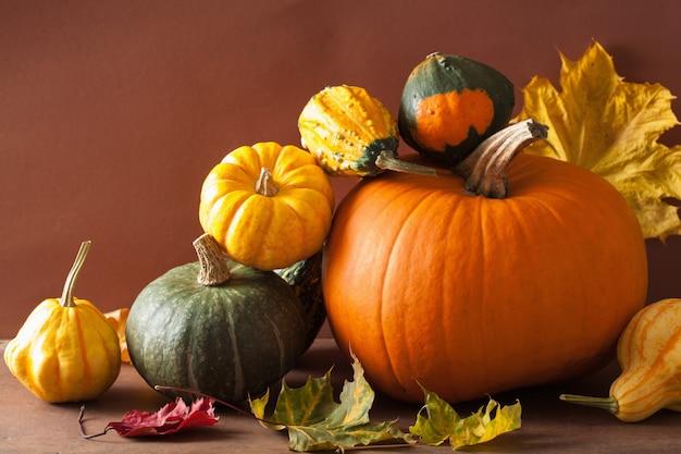 Dekorative kürbisse und herbstlaub für halloween
