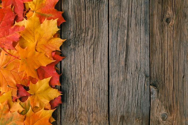 Dekorativer hintergrundrahmen aus herbstahornblättern