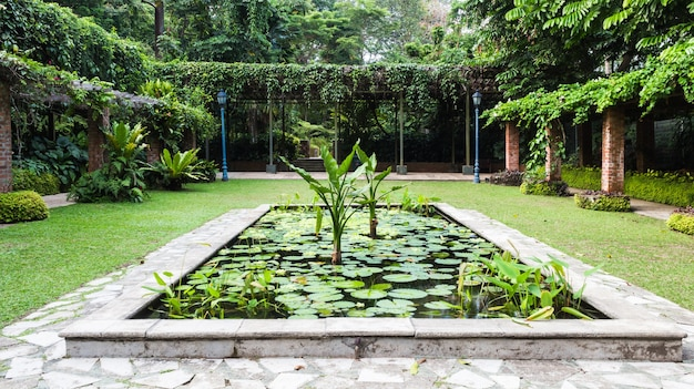 Dekorativer teich im botanischen garten von singapur Premium Fotos