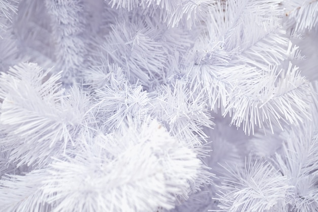 Dekorativer weihnachtshintergrund eines weißen fichtenzweigs