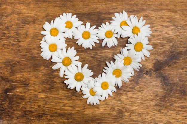 Dekoratives herz aus weißen blüten
