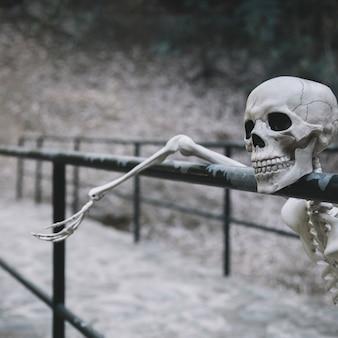 Dekoratives skelett, das auf geländer stillsteht und weg schaut