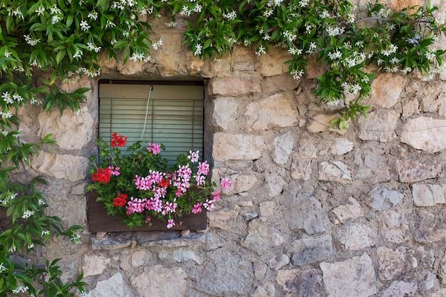Dekoratives vintage-fenster mit bunten pflanzen in töpfen.