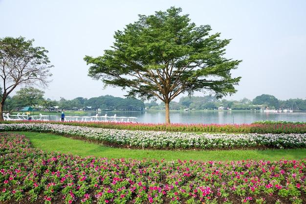 Dekorieren sie die landschaft im einklang mit der natur im park.