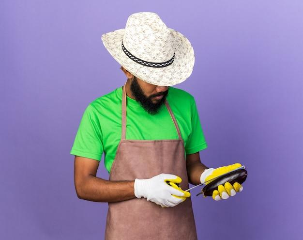 Denkender junger gärtner afroamerikanischer mann mit gartenhut und handschuhen, der auberginen mit maßband misst