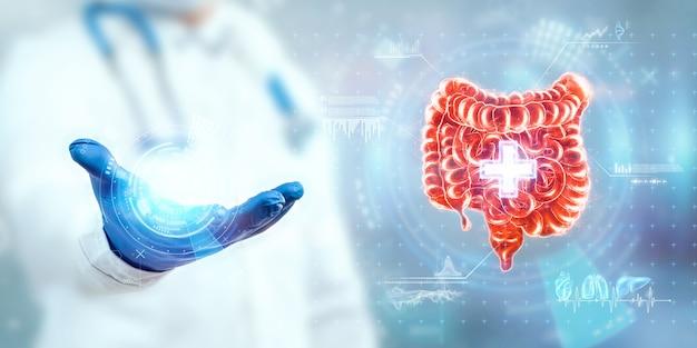 Der arzt schaut sich das hologramm des darms an, überprüft das testergebnis auf der virtuellen oberfläche und wertet die daten aus. ulkus, chirurgie, innovative technologien, medizin der zukunft.