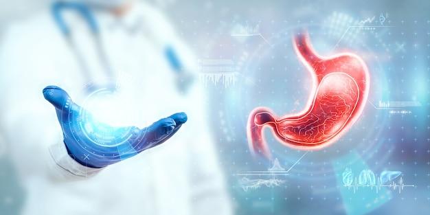Der arzt schaut sich das magen-hologramm an, überprüft das testergebnis auf der virtuellen oberfläche und wertet die daten aus. magenerkrankungen, übergewicht, innovative technologien, medizin der zukunft.