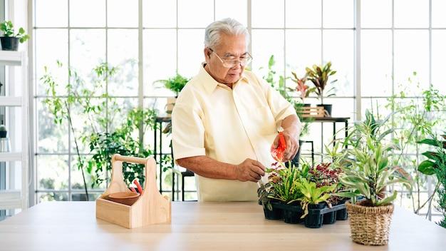 Der asiatische großvater im ruhestand kümmert sich gerne um die pflanzen in einem innengarten und gießt die pflanzen mit einem sprühgerät im haus mit einem lächeln und glück. ruhestandsaktivitäten.