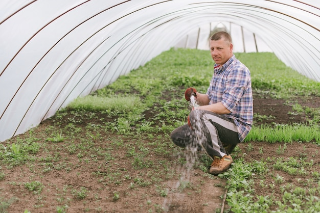 Der bauer kümmert sich um die pflanzen im gewächshaus