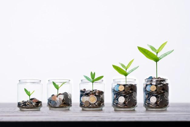 Der baum und schössling, die frome aufwachsen, prägen geld im glas glas auf hölzerner tabelle und erhöhen und sparen finanzkonzept