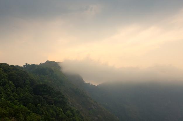Der berg mit dem immergrünen baum im nebel in einer szenischen landschaftsansicht.