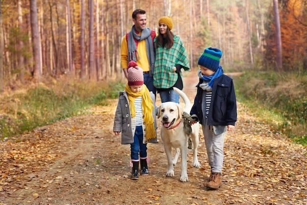 Der beste freund des menschen ist ein hund