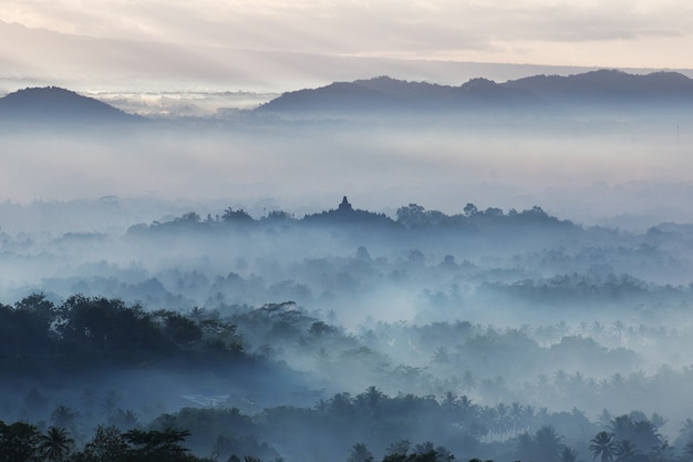 Der blaue nebel während des sonnenaufgangs auf borobudur-tempel, indonesien
