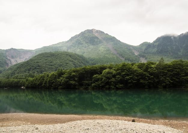 Der blick auf den bach fließt durch den wald auf den berg hinunter