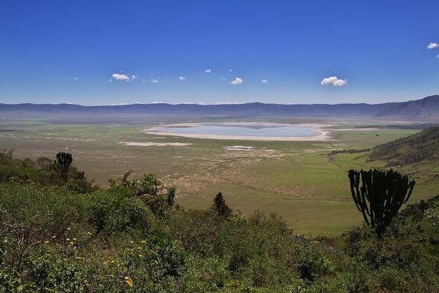 Der blick auf den ngorongoro-nationalpark in tansania
