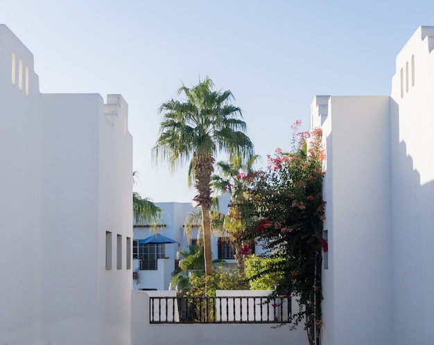 Der blick auf die oberste etage des hauses im tropischen garten mit balkon und dach.