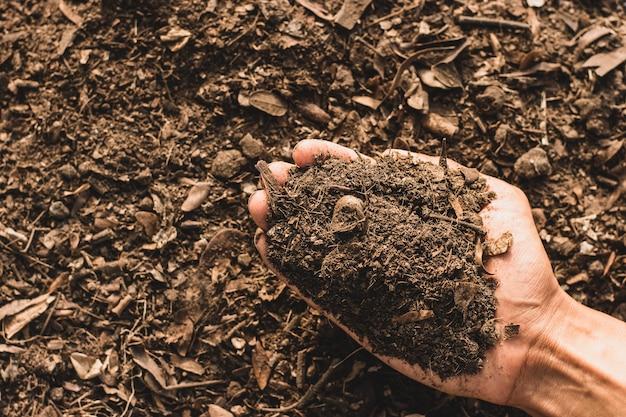 Der boden ist reich an mineralien, geeignet für den anbau in den händen von menschen, bauern.