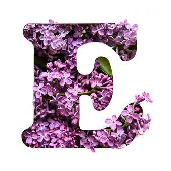 Der buchstabe e des englischen alphabets aus flieder