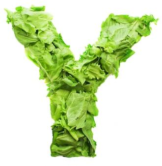 Der buchstabe y mit nahrhaften salat gemacht
