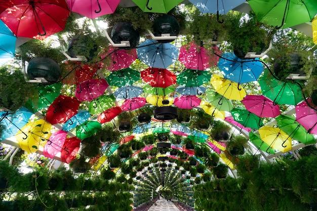 Der bunte blumen- und regenschirmbogen an der corniche station doha katar