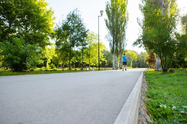 Der fahrweg im stadtpark mit bäumen und gras