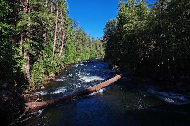 Der fluss im nationalpark, usa