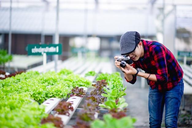 Der fotograf fotografiert gerne die salatfelder.