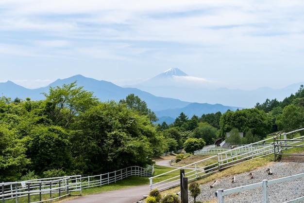 Der fujisan vom park mit schöner natur