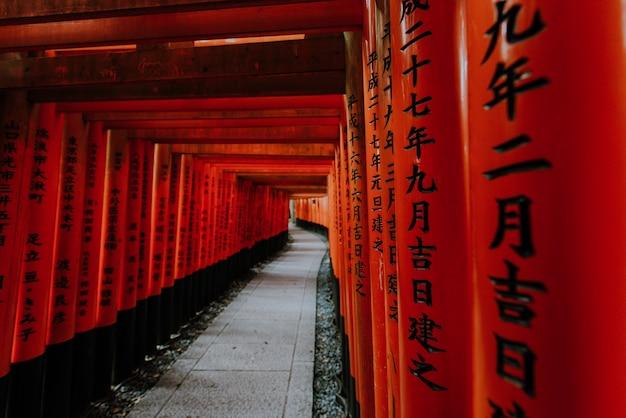 Der fushimi-inari-pfad in kyoto