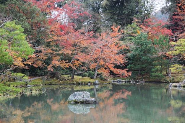 Der garten in kyoto bei japan