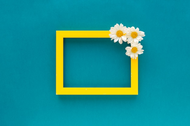 Der gelbe fotorahmen, der mit weißem gänseblümchen verziert wird, blüht auf blauem hintergrund