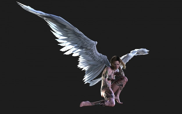 Der himmel angel wings, white wing plumage mit beschneidungspfad.