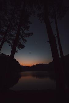Der himmel im morgengrauen spiegelt sich in der lagune, die durch den kiefernwald blickt.