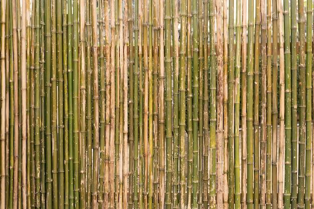 Der hintergrund der wand hergestellt vom bambusbambuszaun-beschaffenheitshintergrund