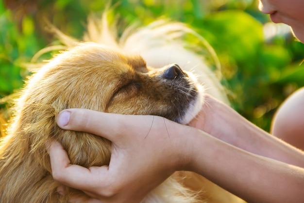 Der hund ist der freund des menschen. gibt dem kind eine pfote.
