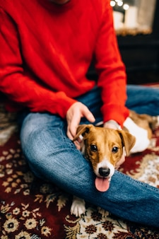 Der hund liegt in den armen des besitzers