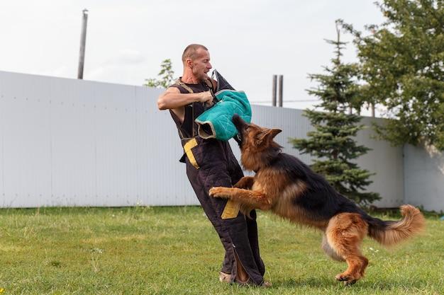 Der hundelehrer führt den unterricht mit dem deutschen schäferhund durch. der hund schützt seinen herrn.