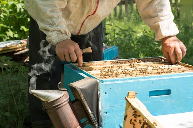 Der imker, der den bienenstock überprüft. imker, der honig erntet