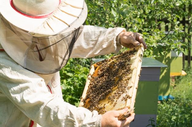 Der imker hält eine wabe voller bienen und honig