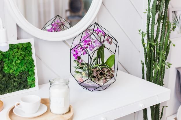 Der innenraum ist hell mit einer komposition aus moos, dekoration mit natürlichen materialien des hauses, der wohnung oder des büros