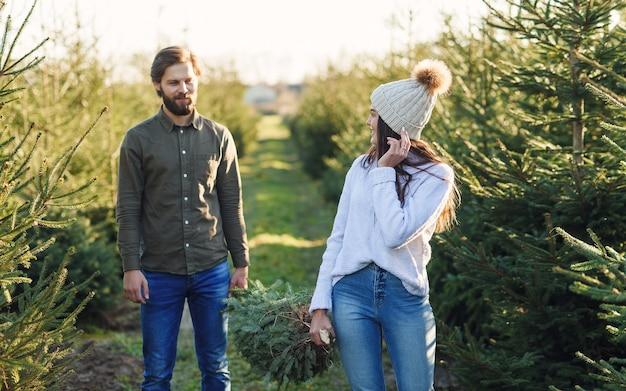 Der junge mann und seine hübsche frau tragen einen frisch geschnittenen weihnachtsbaum auf einer plantage zusammen und bereiten ihn vor