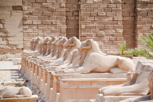 Der karnak-tempelkomplex, allgemein bekannt als karnak, besteht aus einer riesigen mischung aus verfallenen tempeln, kapellen, pylonen und anderen gebäuden in der nähe von luxor in ägypten.