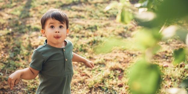 Der kaukasische kleine junge schaut auf den baum, der nach einer frucht sucht, während er während des kindertages auf einem feld spielt