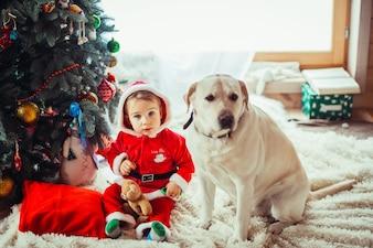 Der kleine Kinder- und Labrador-Hund, der nahe Weihnachtsbaum sitzt