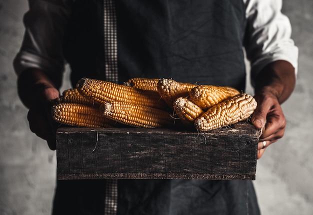 Der landwirt behandelt frischen mais in einer holzkiste